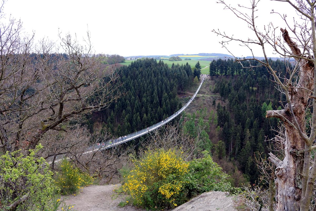 Hängeseilebrücke Geierlay