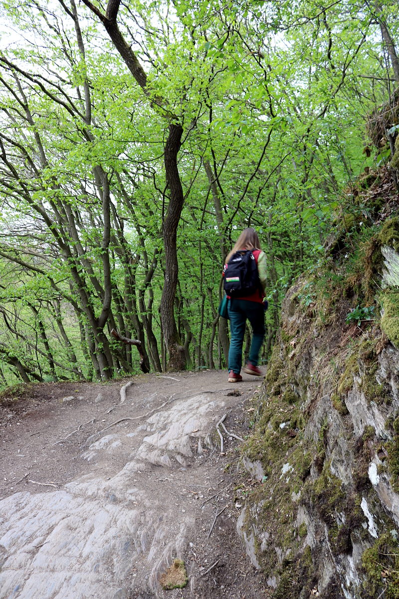 Hiking Trail zur Geierlay
