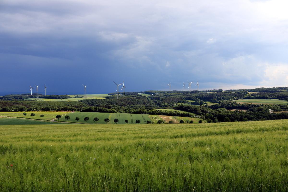 Eifellandschaft in Kaisersesch