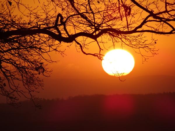 Sonnenaufgang über dem Wachtberg bei Bonn