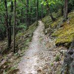 Milchstraßenweg (Trail)