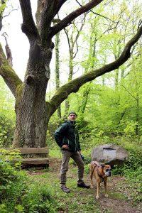Wanderung mit Boxer